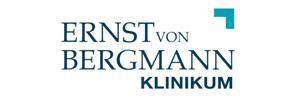 ernst-logo